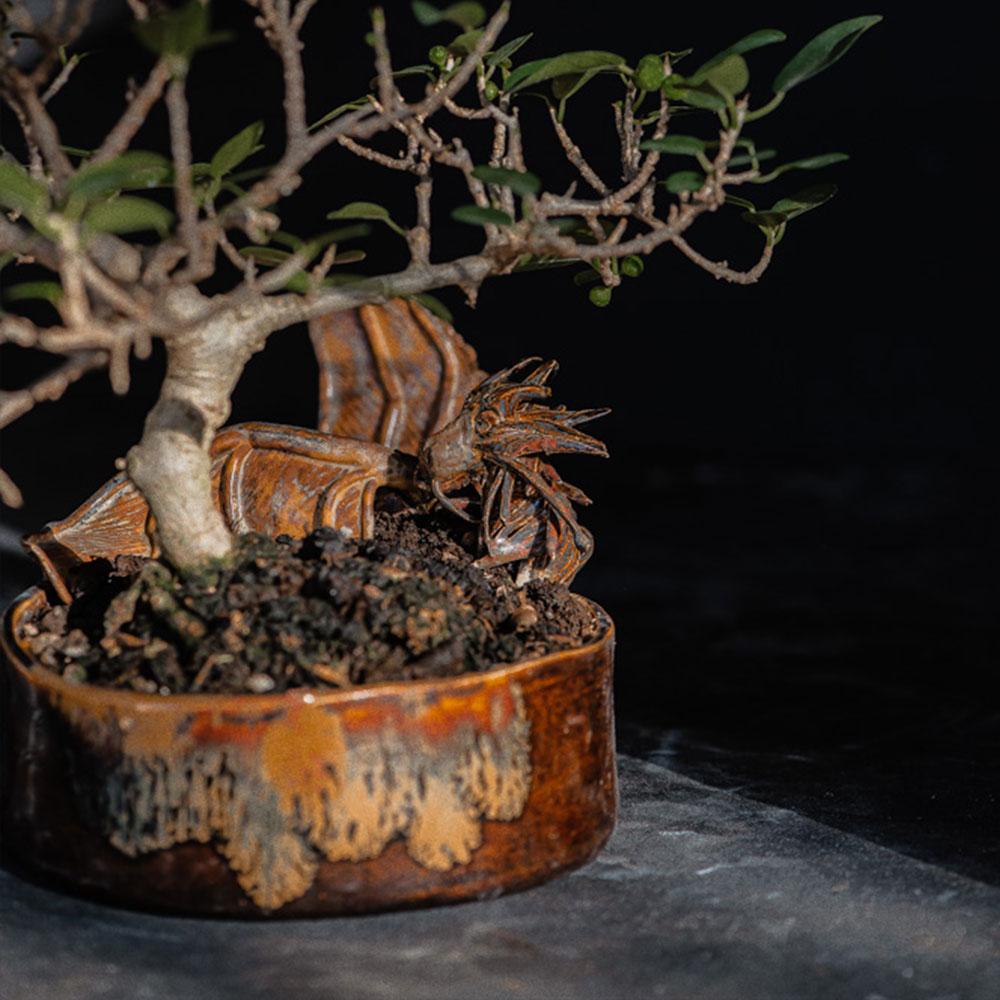 Umhlaba Pottry Studio | Our Work